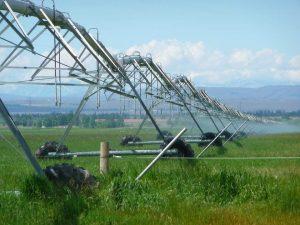 Pulverizadores de agua - Maquinaria Agrícola Núñez