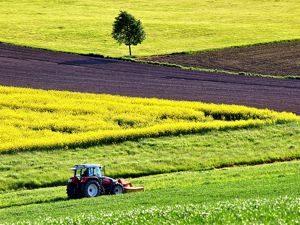 Serrat trituradoras - Maquinaria Agricola Nunez